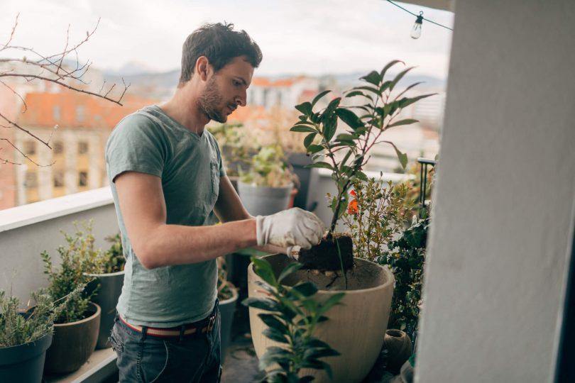 como-construir-um-jardim-em-apartamento-aprenda-agora.jpeg